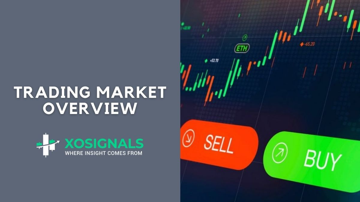 Trading Market Overview